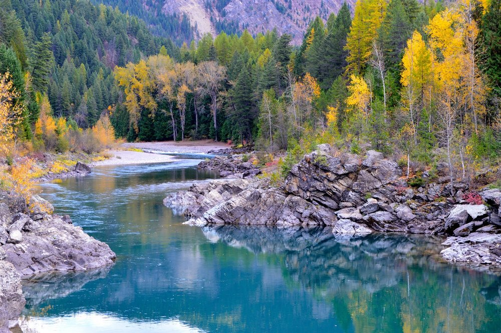 Flathead River - The Flathead River originates in the Canadian Rockies, north of Glacier National Park.  The river flows southwest into Flathead Lake, the largest freshwater lake in the Western United States.