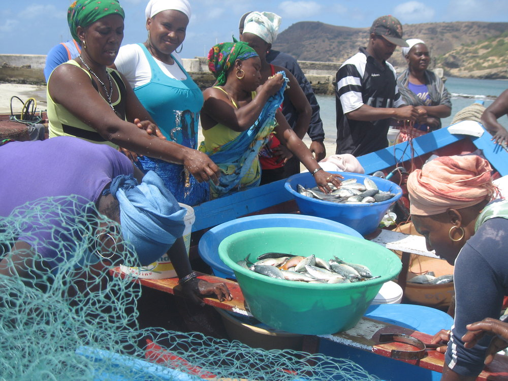 Women engaged in fish processing in Cape Verde. Photo by  Farah Obaidullah