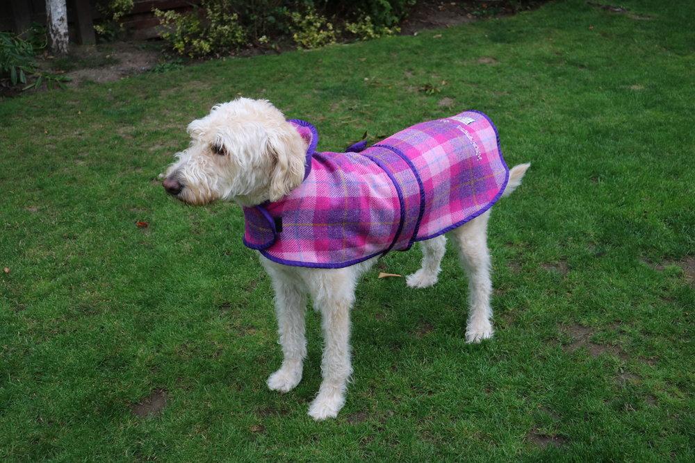 Mucki Mutz 'Harris Tweed' Dog Coat
