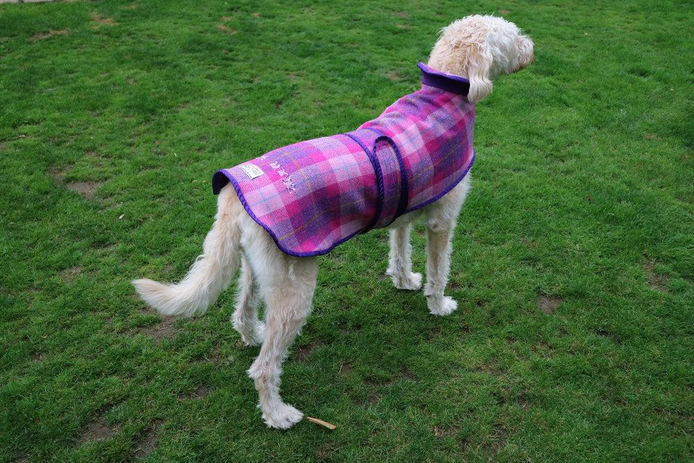 Mucki Mutz Harris Tweed Dog Coat