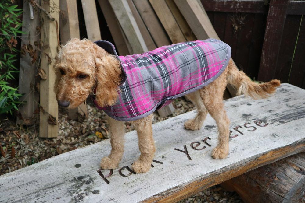 Mucki Mutz Classic Dog Coat