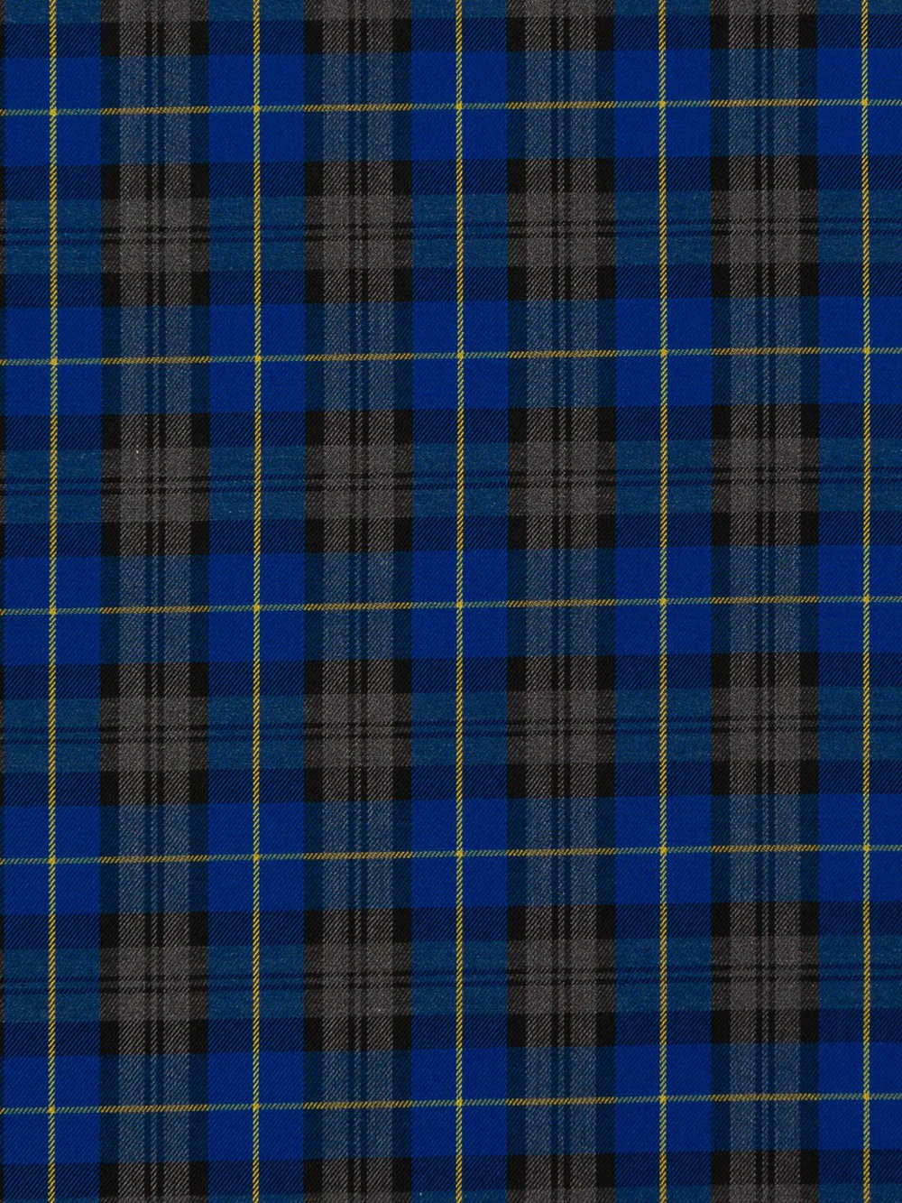 Blue and Black Check