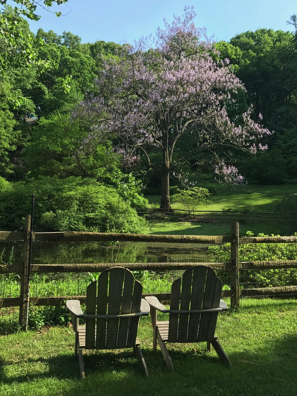 pond walk and talk therapy women malvern pa