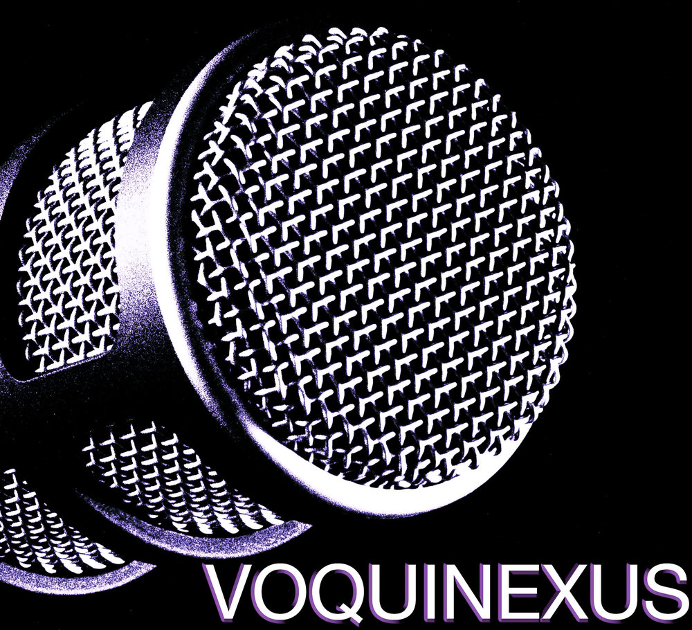 VQX logo nr monochrome (1 of 1).jpg