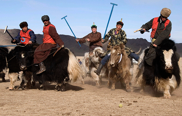 Courtesy of the Mongolian Association of Sarlagan Polo
