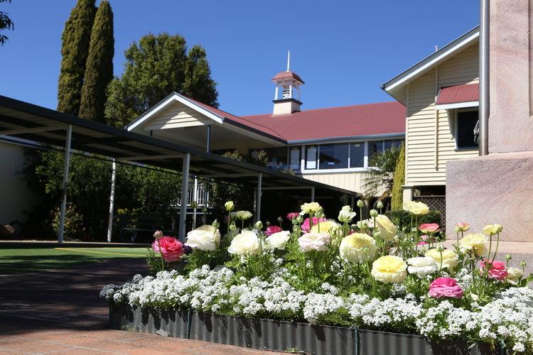 Newtown State School, NSW Australia
