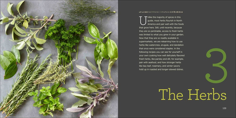 essential-spices-and-herbs6.jpg