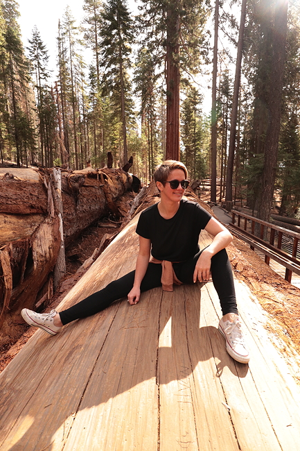 Hayley Carr in California: Leadership and Life Coach - Hayleycarr.tv.