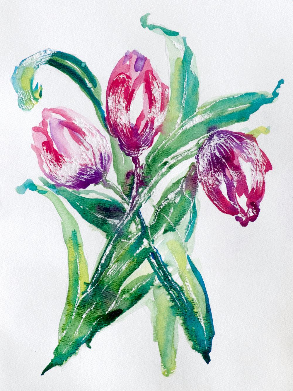 Pink Tulip Arabesque