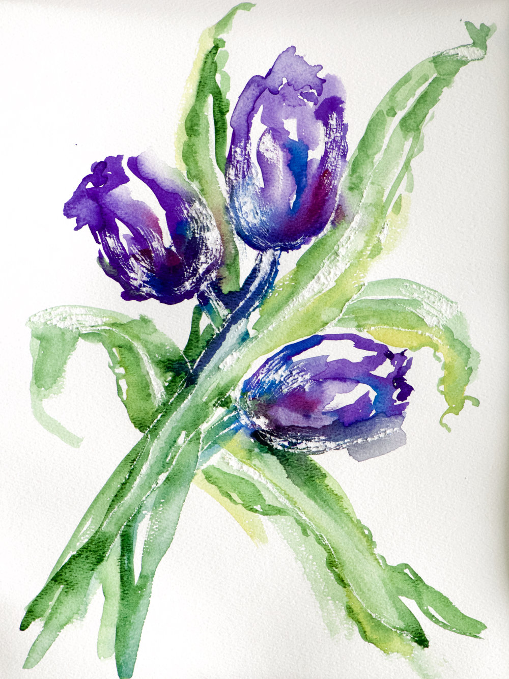 Purple Tulips Dancing
