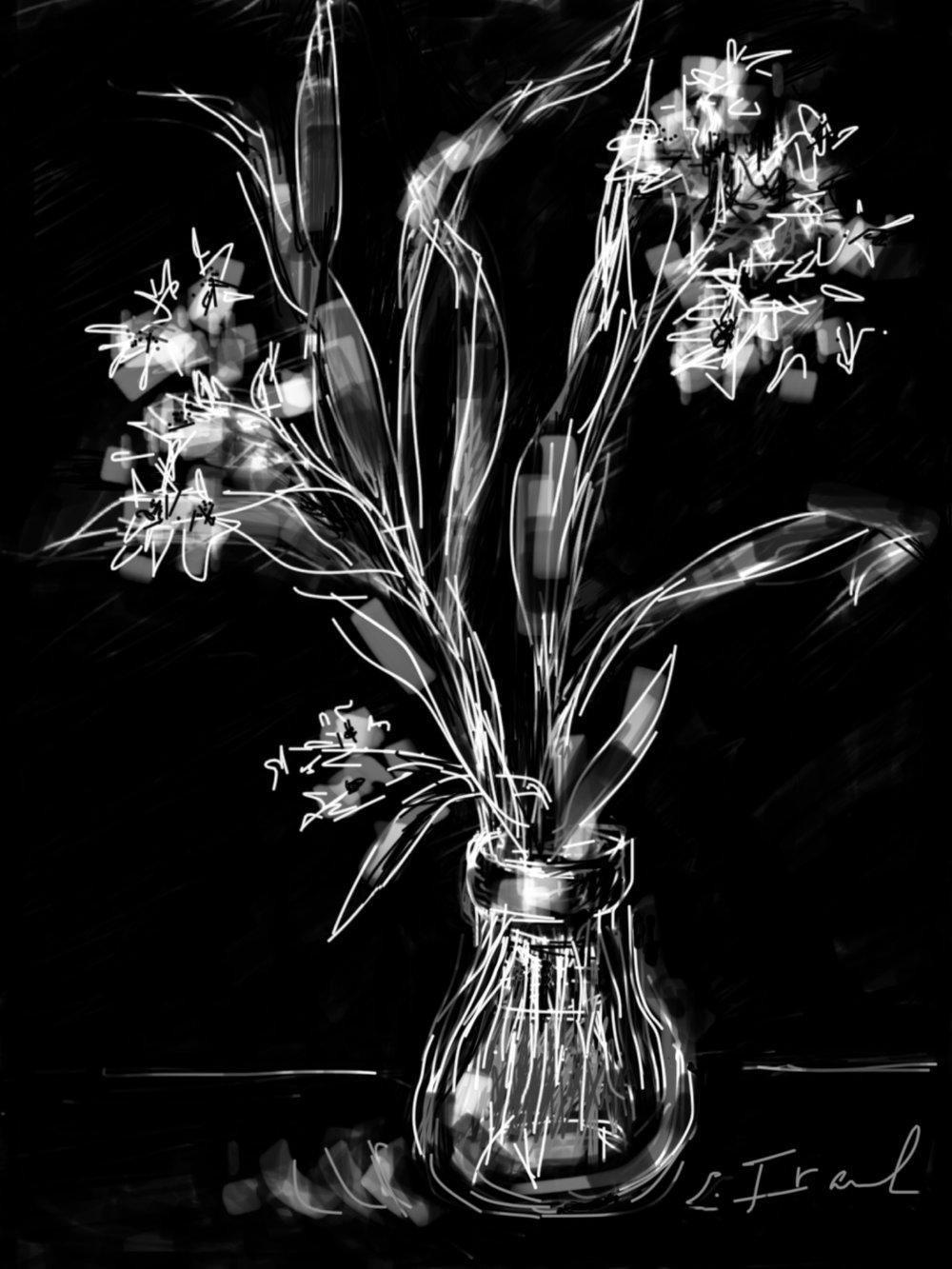 Paperwhites in Vase