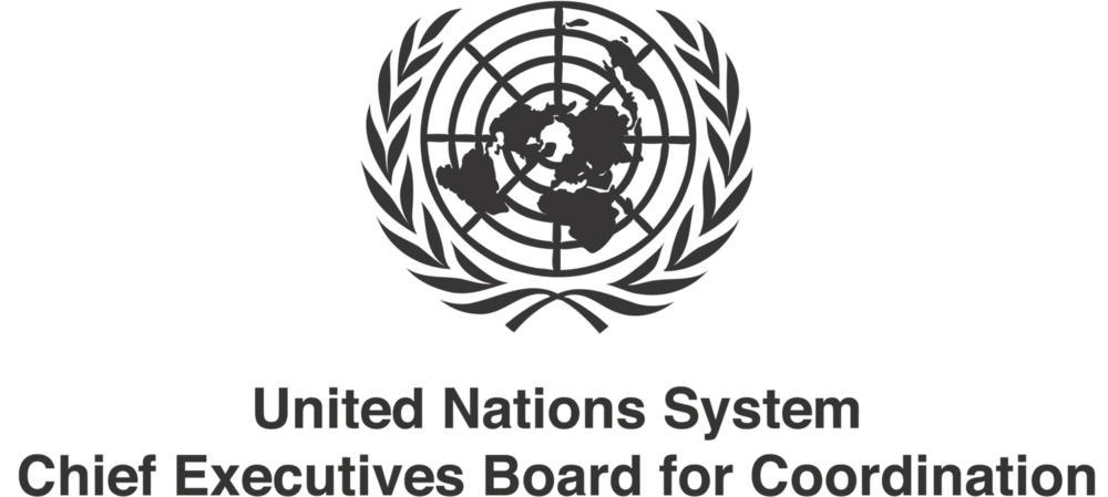 UN CEB for Coordination