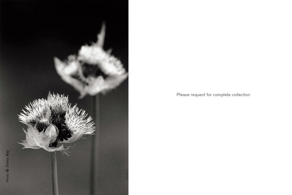 13-Landscapes&Floral-Back_MUC_07365_5-WM-black_1600x2400-T.jpg