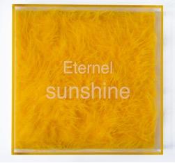 Eternel Sunshine edition 2009