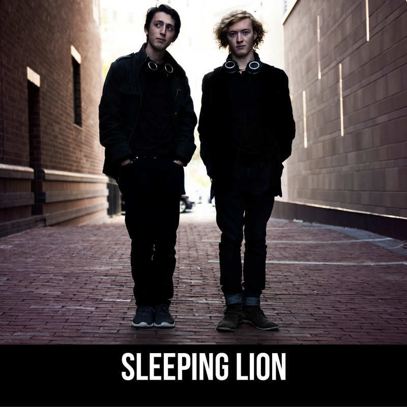 11 - Sleeping lion.png