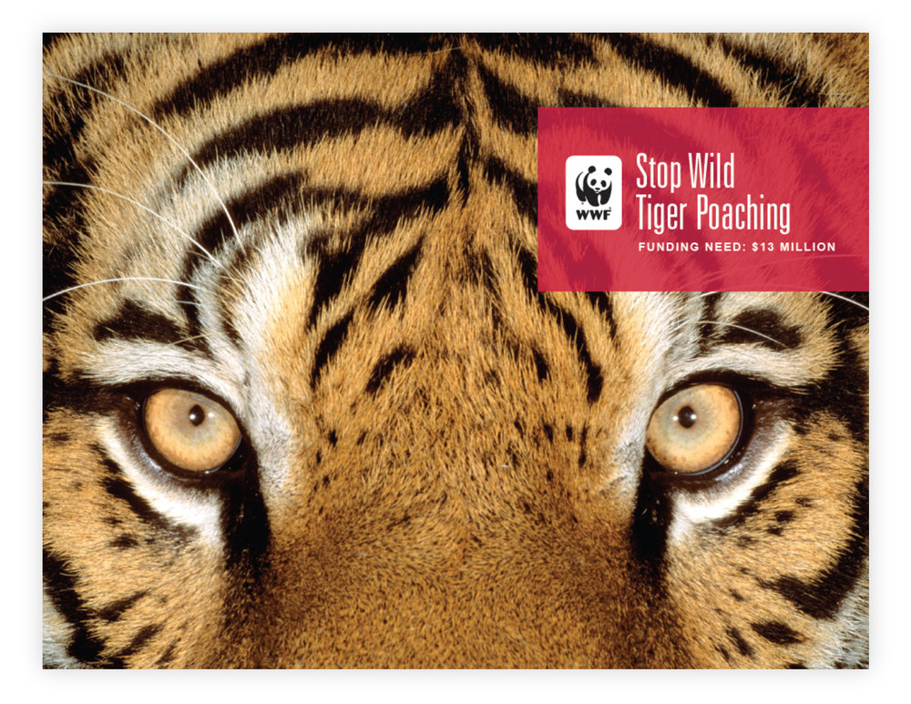 WWF_Page_1.jpg