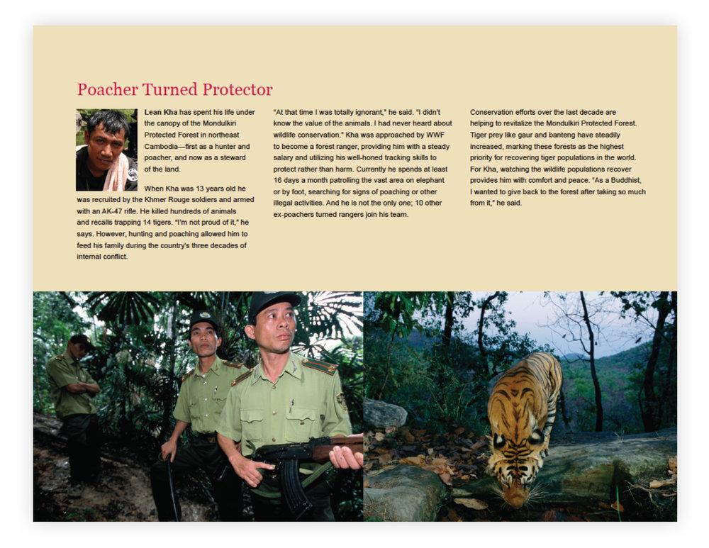 WWF_Page_3.jpg