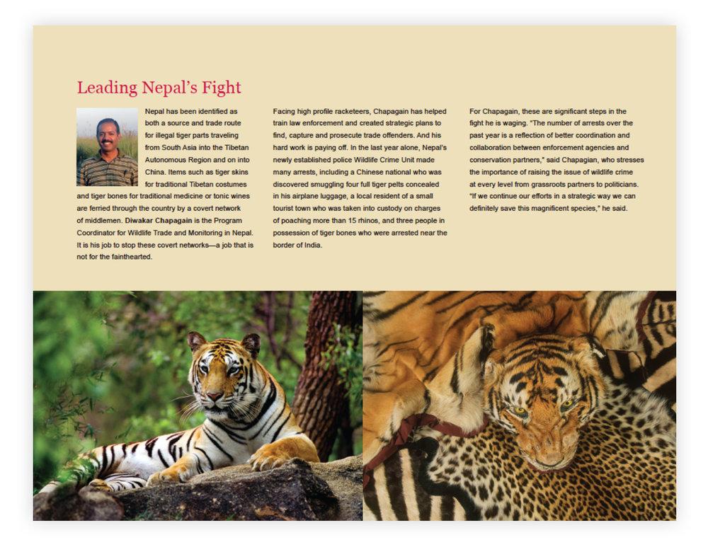 WWF_Page_5.jpg