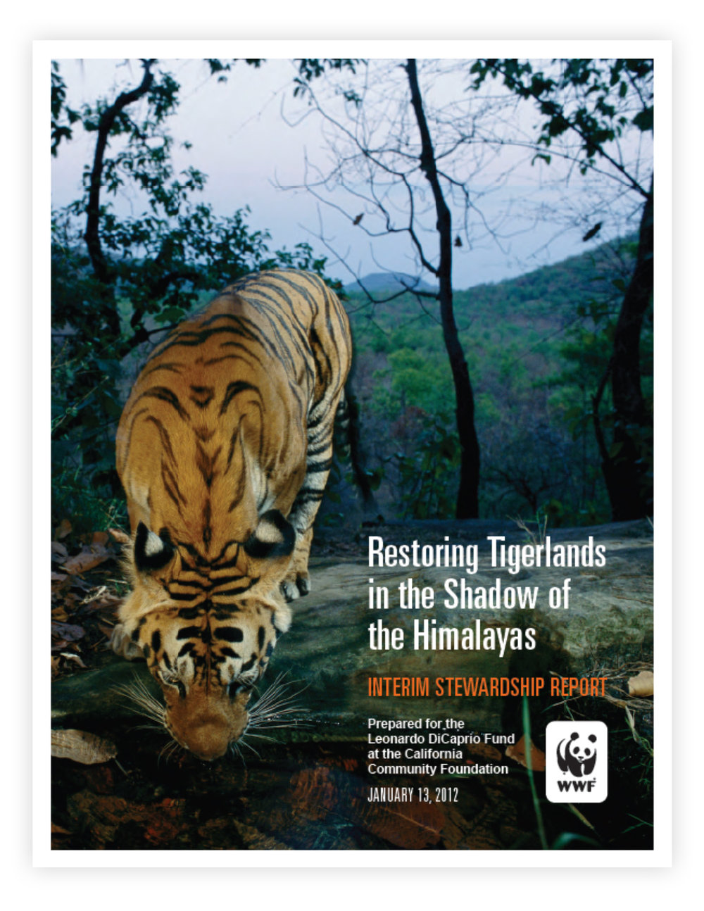 WWF_Stewardship_1.jpg