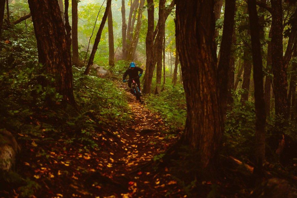 bike & sleep - ESSAYEZ NOTRE NOUVELLE PISTE DE VÉLO DE MONTAGNE+LA VOLVERINE& PROFITEZ D'UNE JOURNÉE EN FAMILLE AUX SENTIERS DU MOULIN