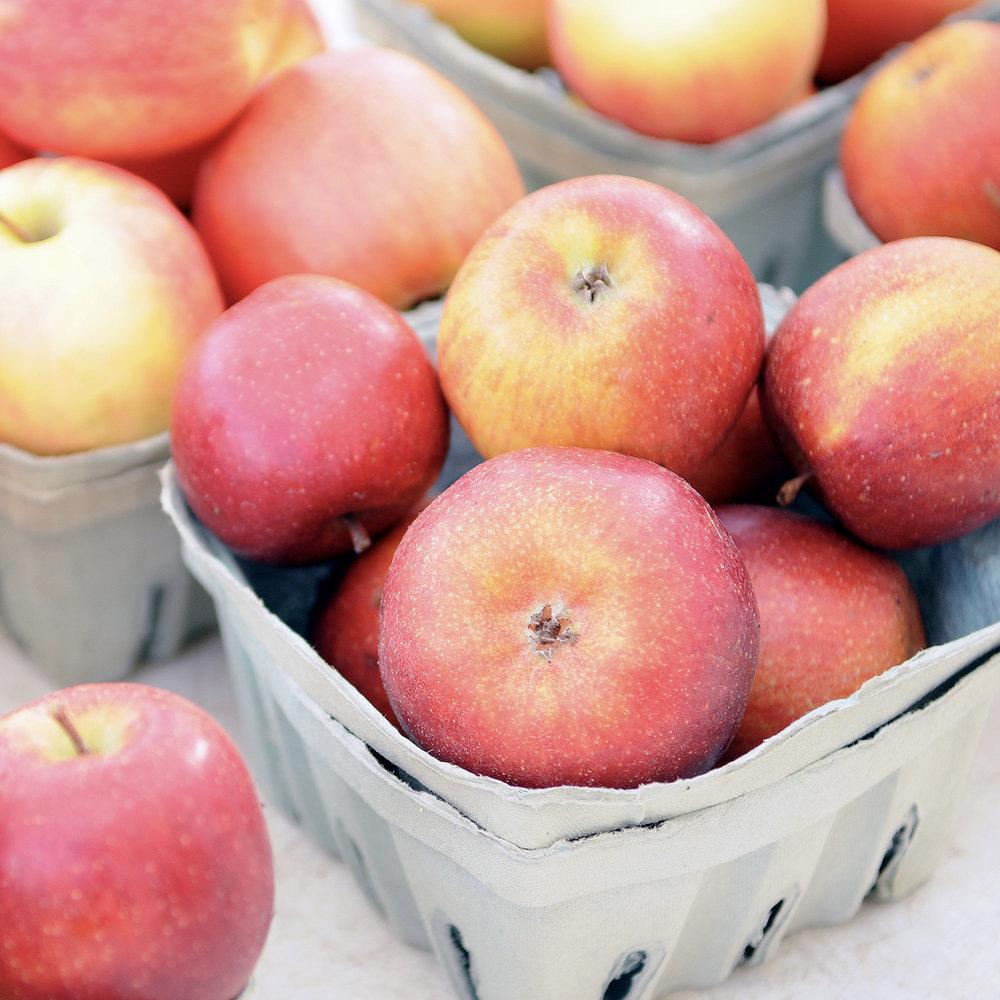 Farmers Market Dock_Apples.jpg