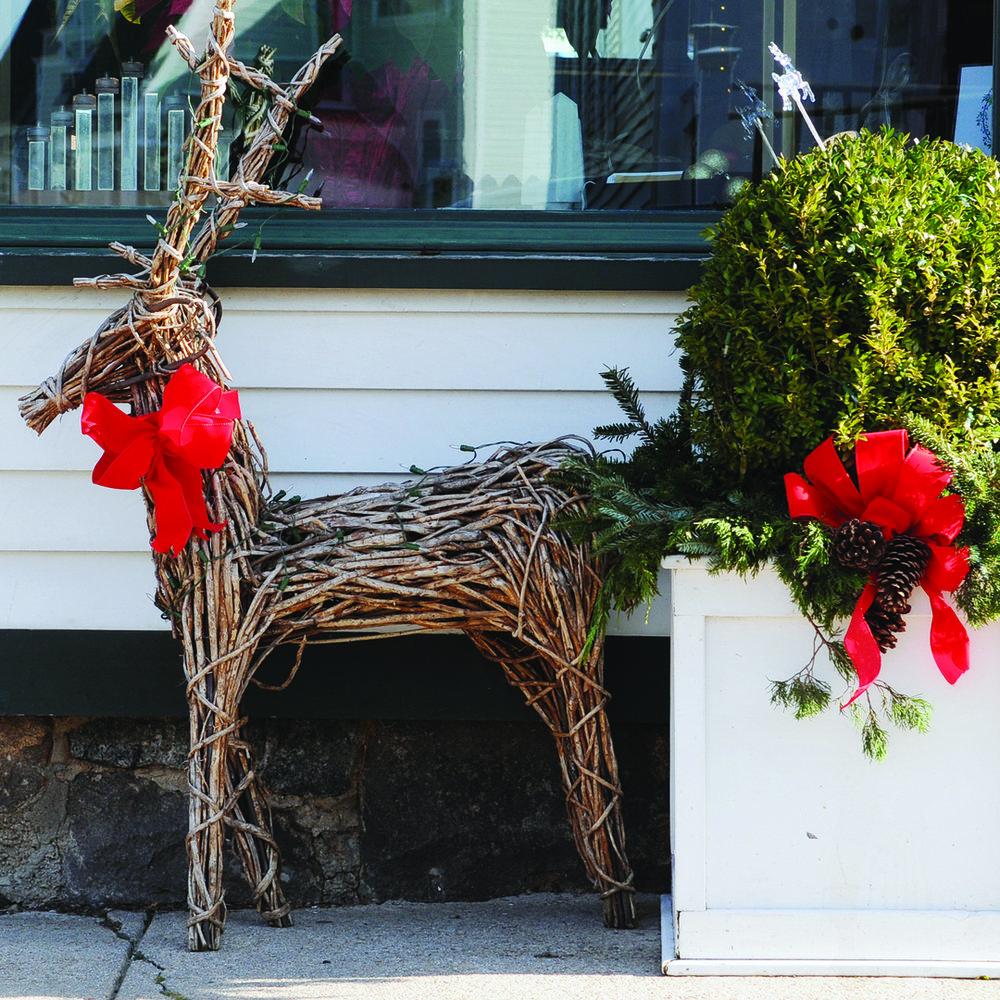 SBMA_reindeer_side.jpg