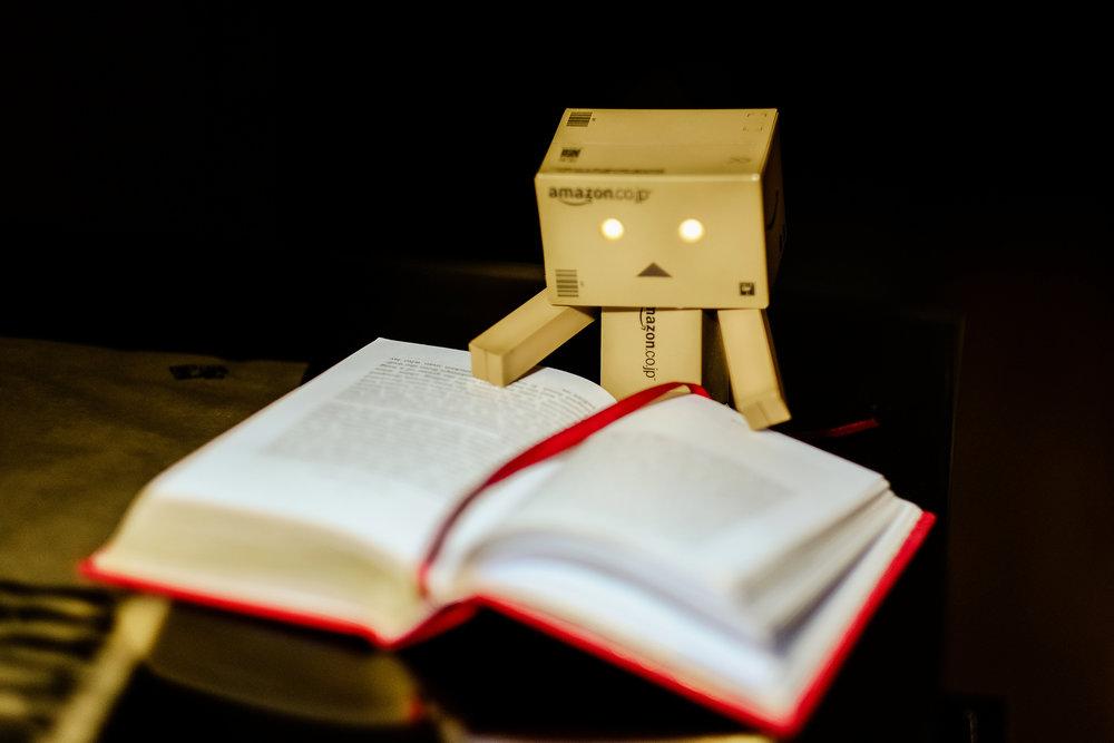 Danbo-reading.jpg