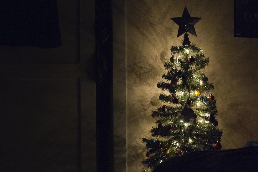 Árvore-de-Natal.jpg