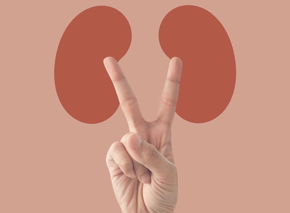 """Campanha alerta para a importância de estar atento aos sinais: """"A vitória contra a doença renal começa na prevenção"""""""