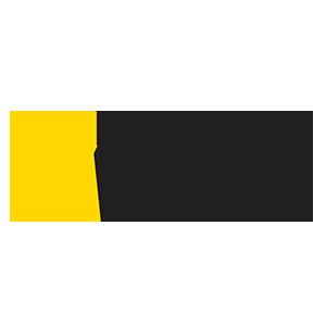 NG WILD.png