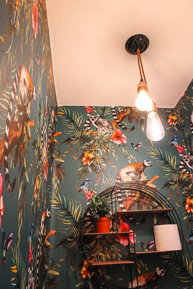 Dark-wallpaper-in-tiny-guest-wc