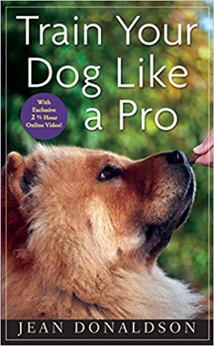 train your dog like apro.jpg