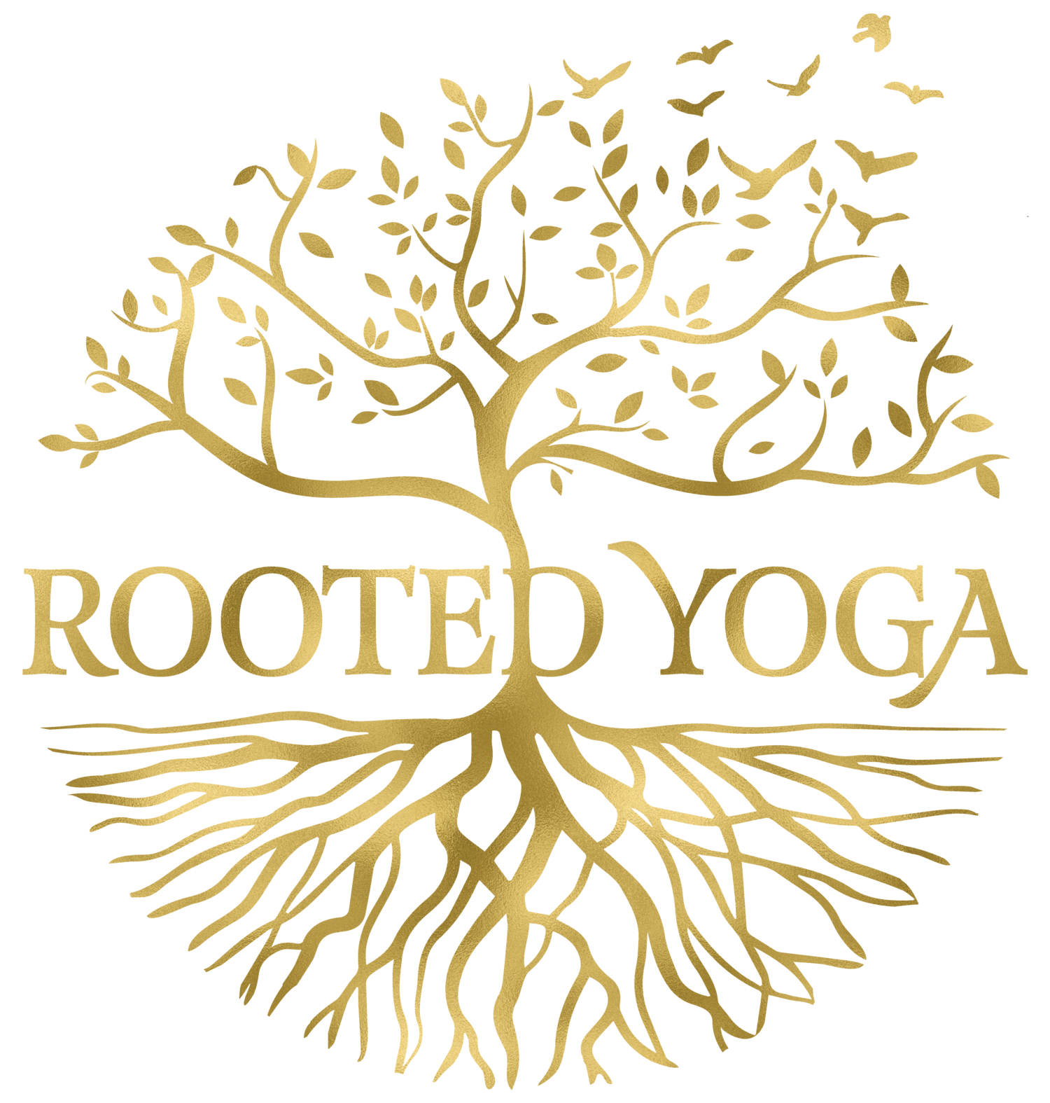 Rooted Yoga Cape Cod fitness studio with childcare