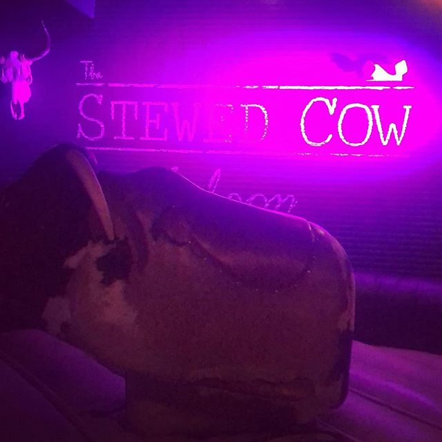 Frankie Stewnatra loves  a long weekend 😈 Mount up and grab your cowboy boots and head on over to your favorite neighborhood bar @thestewedcow for bullriding and shot specials! A little liquid courage never hurt nobody 🥃🐮 . . .  #whiskey #ryes #bourbon #manhattan #oldfashions #beersandbourbon #whiskeyislife #whiskeyforever #cocktails #hoboken #hobokenhappyhours #happyhour #bullriding #longweekends Saturdaynight