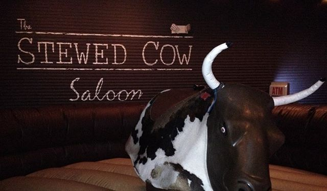 Frankie is warmed up and ready to go. #stewedcow #hoboken #rideme #whiskeymakesmefrisky