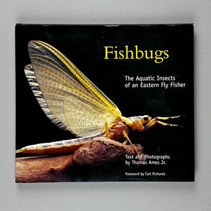 fishbugs_tn.jpg