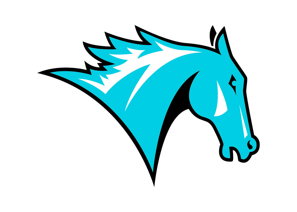 Colby-Sawyer Athletics wanted their brand to better family with the new logo/word mark we created for the College. They love this new one, and any remote similarity to the Denver Broncos mascot is considered a good thing.