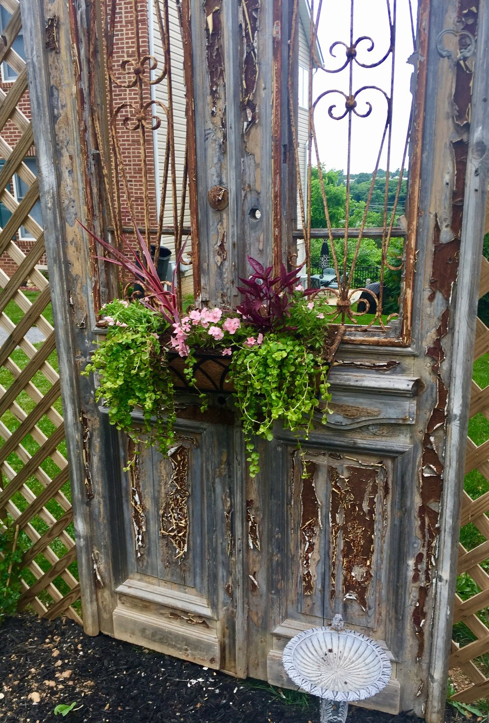 Antique door used as the backdrop for this garden.