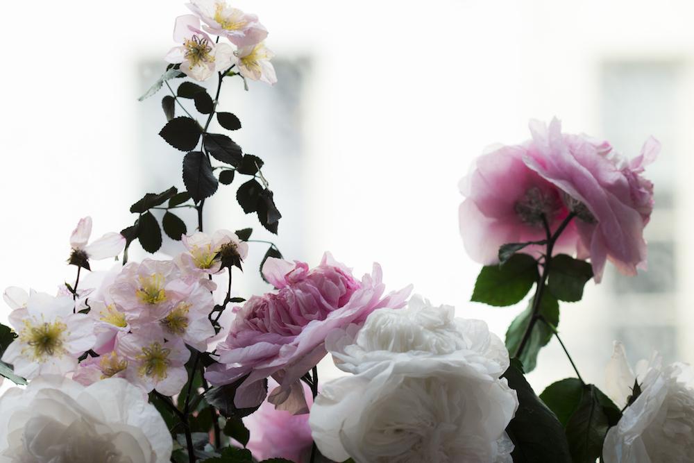 RosesAnciennes-copie.jpg