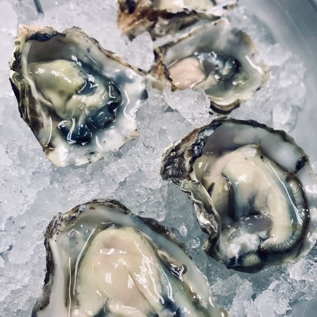 Tuesday Oyster Night - Half Price Oysters on the Half Shell$5 Oyster ShootersShucked - Grilled - Fried Oyster Specials
