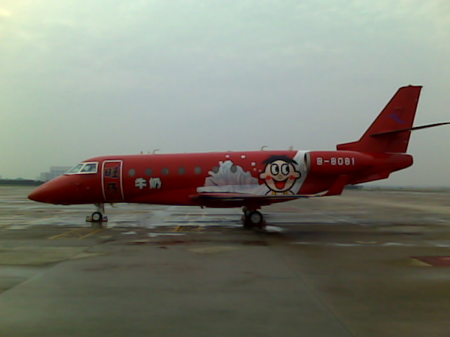 Couldn't resist showing you the paint scheme on the aircraft parked next to us in Shanghai, what were these people thinking?
