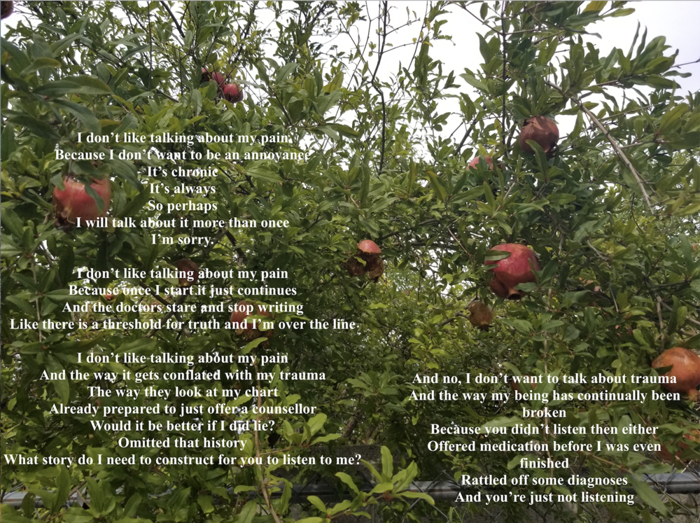 Image of pomegranate trees taken by sav with words from the poem written over them in white