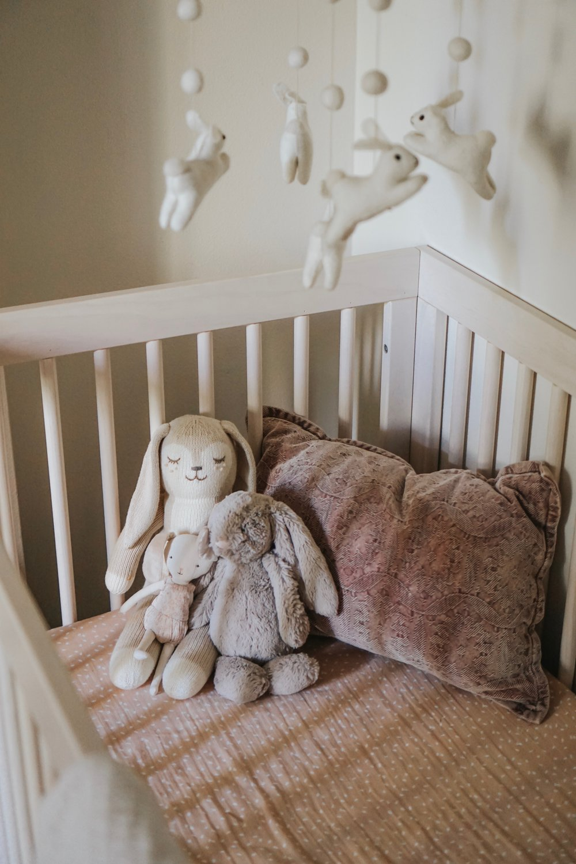 Honey the bunny  |  Jellycat Bunny  |  Tiny bunny  (pillow discontinued Target)