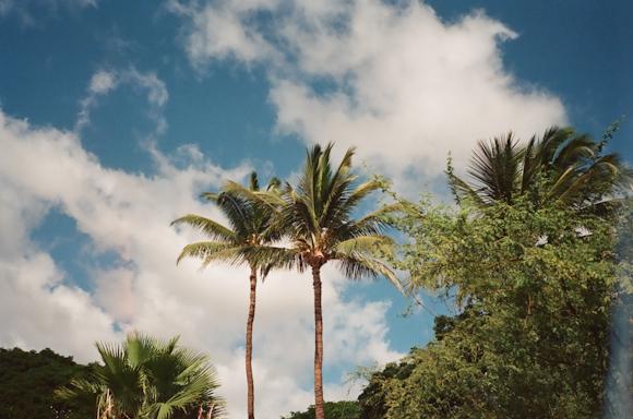 emilyanderson_hawaii-75100002