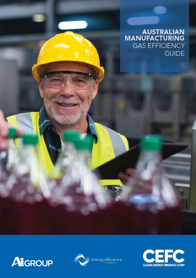 Gas Efficiency Guide.png