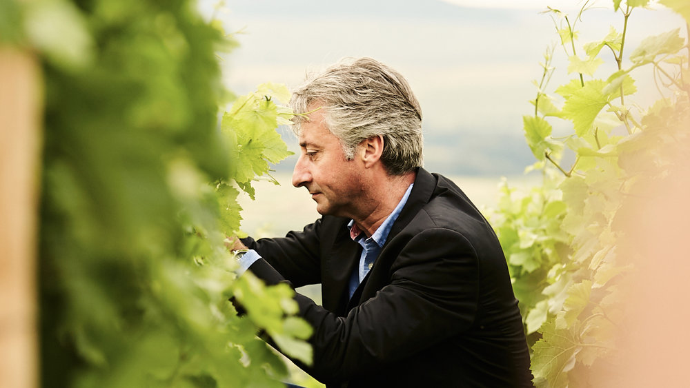 Emmanuel Delescot   The House of Edouard Brun owns family vineyards of over 9 hectares composed of Pinot Noir, Pinot Meunier and Chardonnay. They are located in the famous terroir of Montagne de Reims , especially in Ay-Champagne, cradle of the House and are all ranked Premiers Crus and Grands Crus.