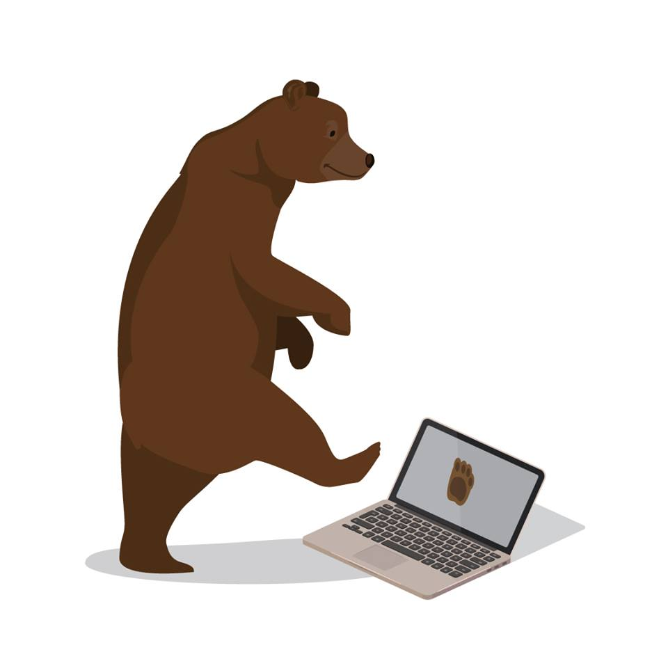 bear Branded computer website design bear