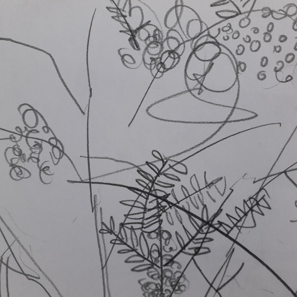 sketchbook-arboretum-ideas-3.jpg