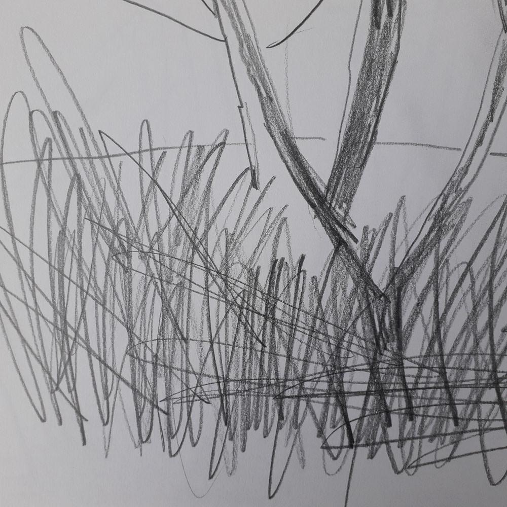 sketchbook-arboretum-ideas-1.jpg