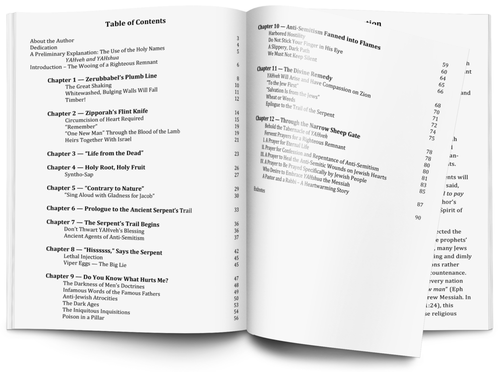 Table of Contents  + Click to Enlarge